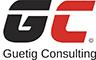 guetig-consulting.com